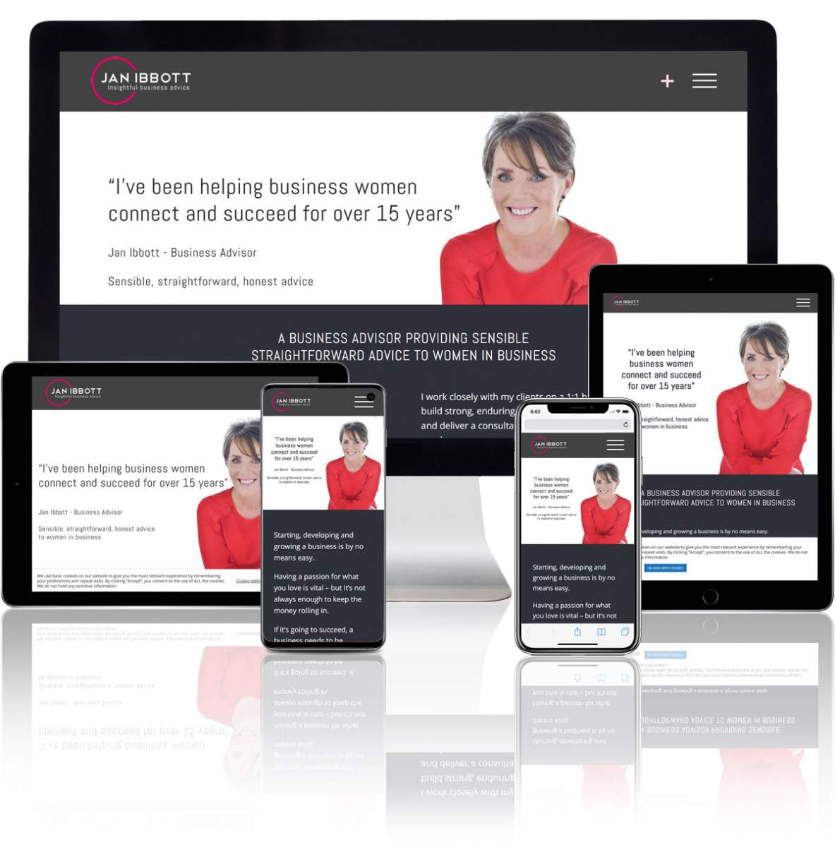 jan ibbott business consultant wordpress website